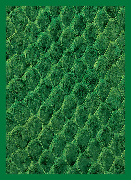 Sleeve - Dragon Hide Green