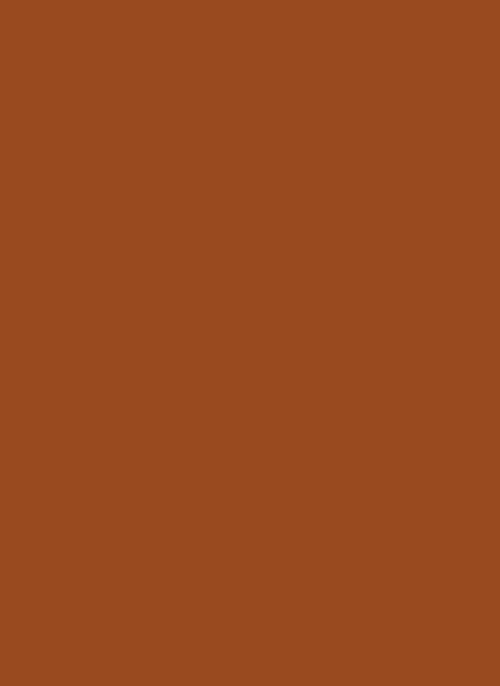 Sleeves - Gloss Brown