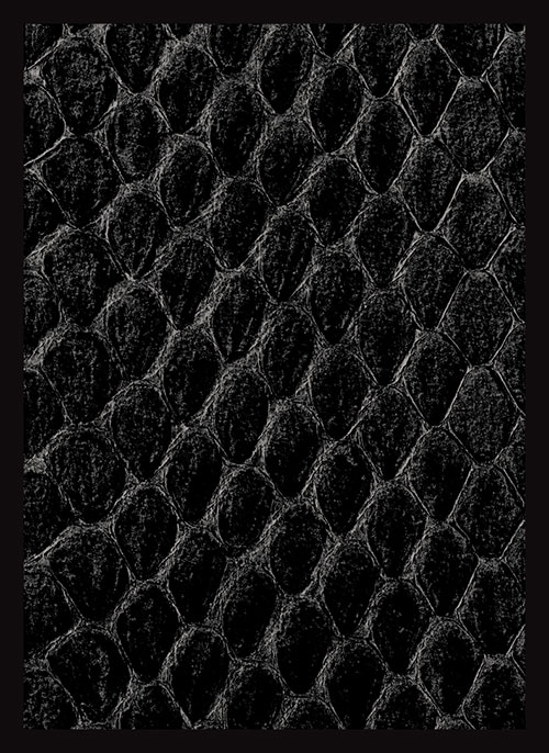 Sleeve - Dragon Hide Black