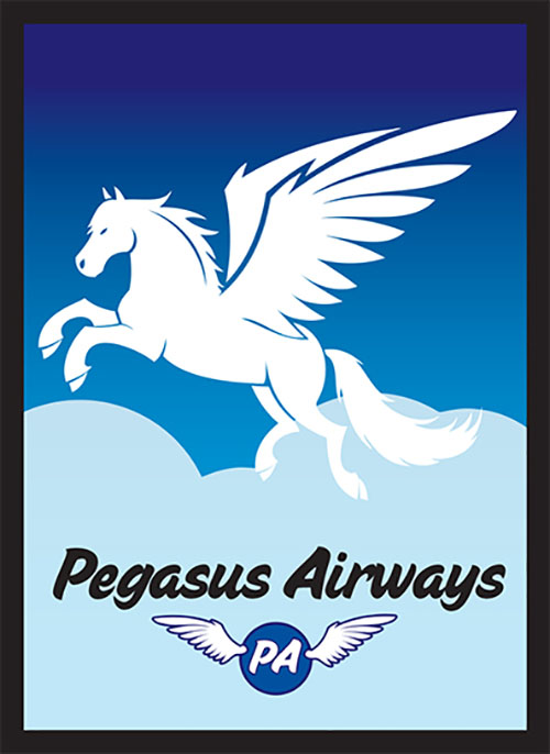 Sleeve - Pegasus Air